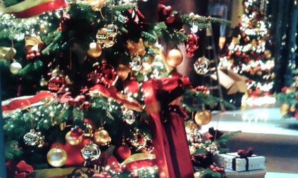 Grote foto wij leveren kerstbomen met versiering voor feest diensten en vakmensen catering