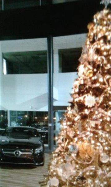 Grote foto grote kerstbomen met versiering te huur diensten en vakmensen kerst
