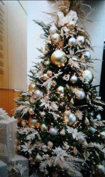 Grote foto huur kerstbomen bij u geleverd nordmann... diensten en vakmensen feesten