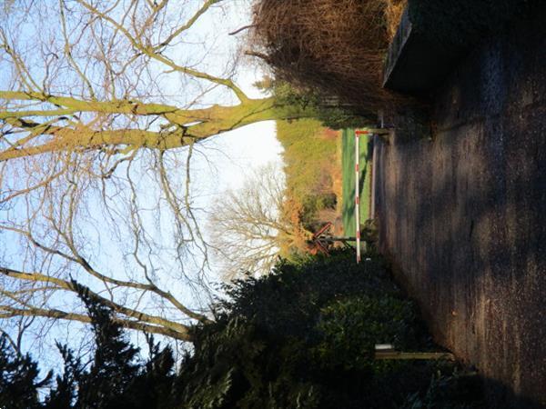 Grote foto grote gemeubileerde chalet te huur in bosrijke omgeving.idea huizen en kamers recreatiewoningen