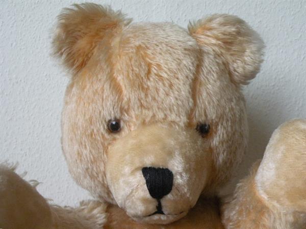 Grote foto beer 60 cm. verzamelen beren