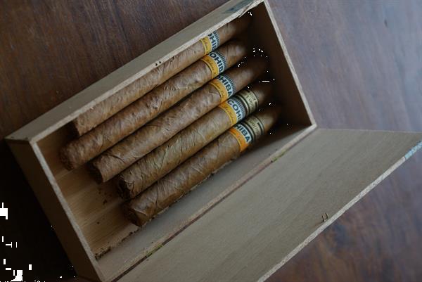 Grote foto cohiba s 5 in doos verzamelen rookartikelen en luciferdoosjes