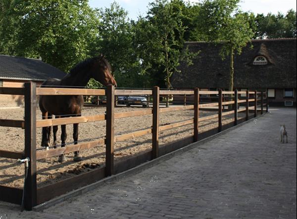 Grote foto omheining gecreosoteerd opschroef paardenbak buitenbak p dieren en toebehoren paarden accessoires