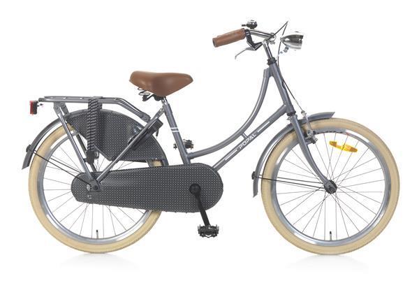 Grote foto omafiets 22 inch grijs fietsen en brommers kinderfietsen