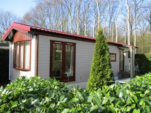 Grote foto direct woonruimte te huur beschikbaar op grens friesland gro huizen en kamers recreatiewoningen