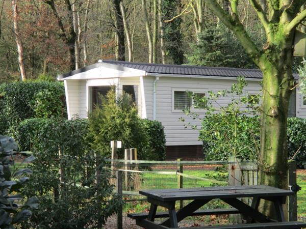 Grote foto camping trimunnt verhuur van tijdelijke woonruimte ideaal bi vakantie campings