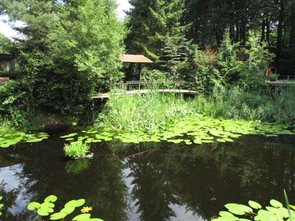 Grote foto camping aan het bos gelegen grens friesland groningen dracht vakantie campings