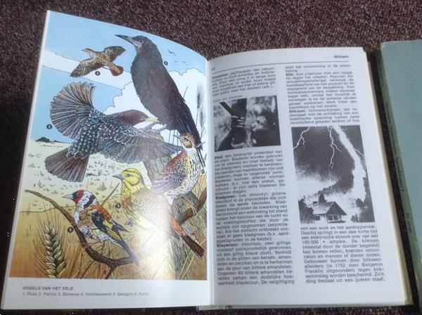 Grote foto van a tot z jongeren vragen beknopte spaakkunst boeken encyclopedie n
