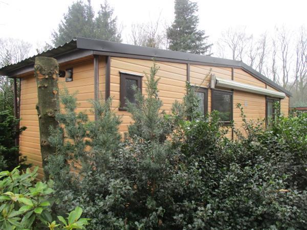 Grote foto rustieke camping groningen a7 verhuur van korte langere per huizen en kamers recreatiewoningen