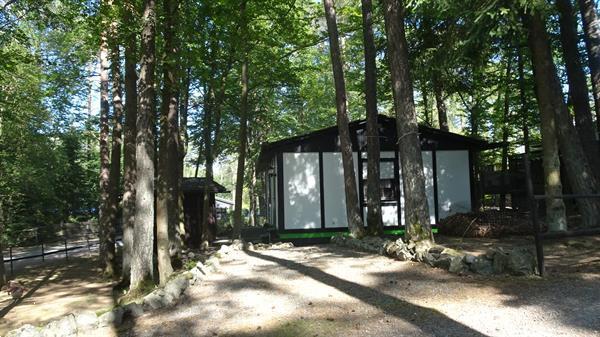 Grote foto bungalow in der eifel auf waldgrundst ck vakantie duitsland west
