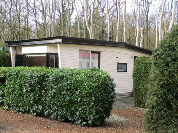 Grote foto spoed woonruimte huren zit u in een verbouwing of tijdelijk vakantie campings