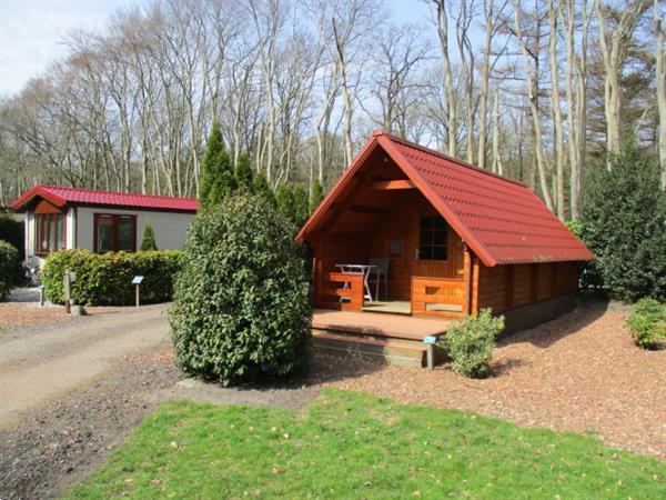 Grote foto gemeubileerde huurwoning tijdelijk te huur ideaal voor werk vakantie campings