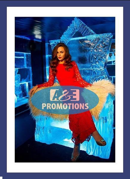Grote foto huur ijszetel frozen ijstroon antwerpen gent diversen kerst