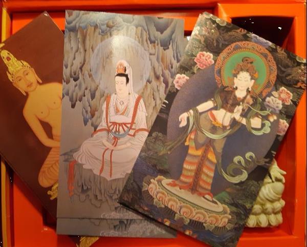 Grote foto the buddha pack gill farrer halls boeken esoterie en spiritualiteit
