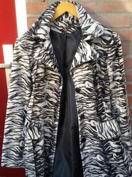 Grote foto luxe dolmatien kleuren mooie vluweel jas elegant kleding dames jassen winter