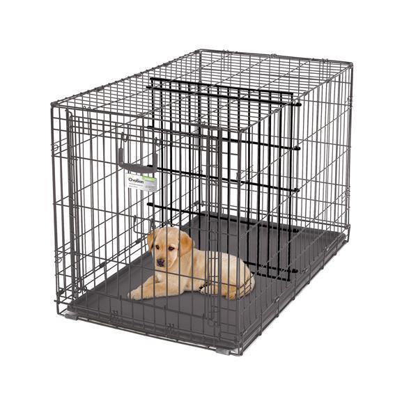 Grote foto hondenbench met roldeur topmerk 40 tussenscherm vetbed dieren en toebehoren hondenhokken en kooien