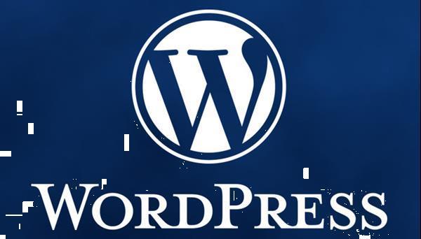 Grote foto laat een wordpress webshop maken vanaf 250 00 diensten en vakmensen webdesigners en domeinnamen