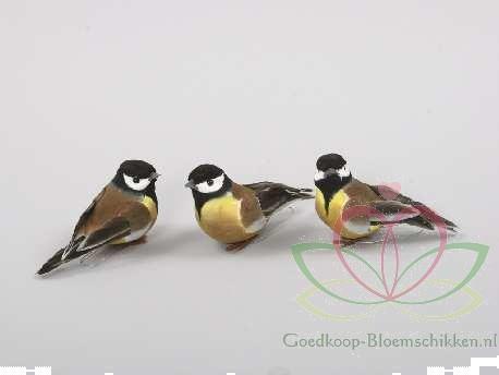 Grote foto vogeltjes de luxe mees mezen ds12 stuks mezen mees verzamelen overige verzamelingen