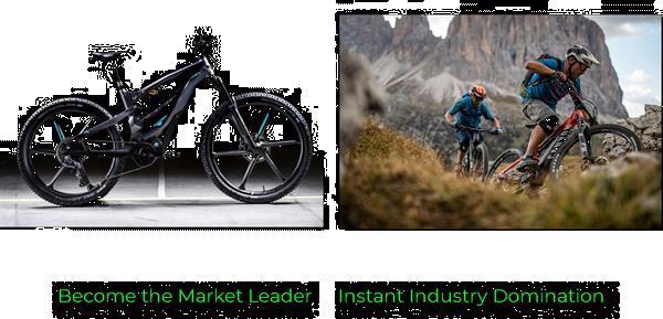 Grote foto elektrische fietsdomeinnamen te koop fietsen en brommers sportfietsen