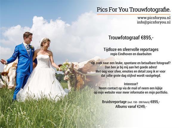 Grote foto bruidsfotograaf eindhoven e.o. 895 picsforyou.nl diensten en vakmensen trouwen