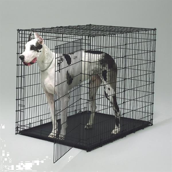 Grote foto hondenbench specialist chewies xl berkel rodenrijs dieren en toebehoren hondenhokken en kooien
