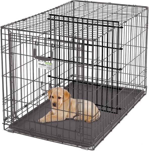 Grote foto hondenbench nergens goedkoper gratis bezorging dieren en toebehoren hondenhokken en kooien