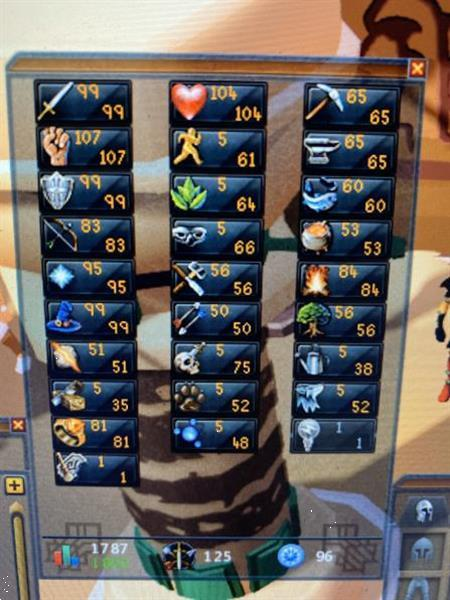 Grote foto runescape 03 account spelcomputers games overige games