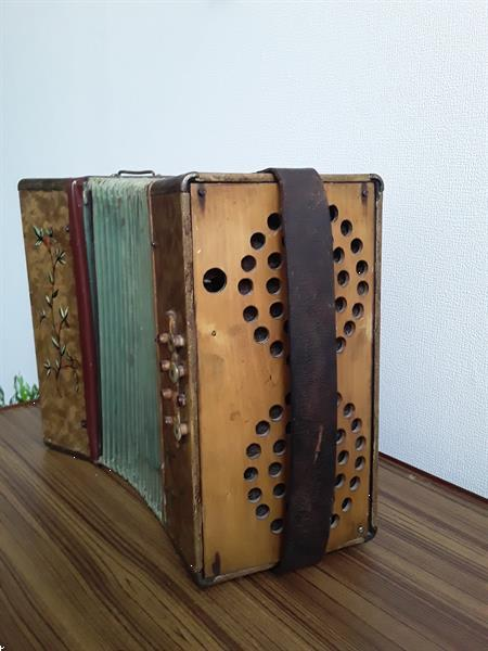 Grote foto cavagnola muziek en instrumenten accordeons
