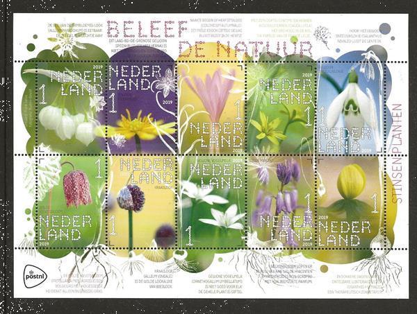 Grote foto beleef de natuur stinsenplanten postzegels en munten thematische zegels