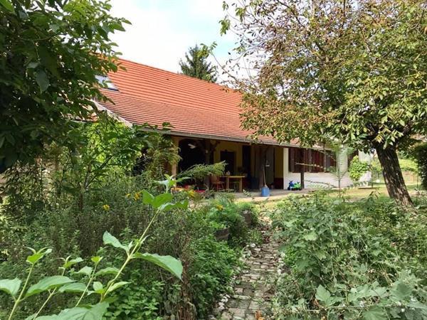 Grote foto authentiek hongaarse herenboerderij te koop huizen en kamers woonboerderij