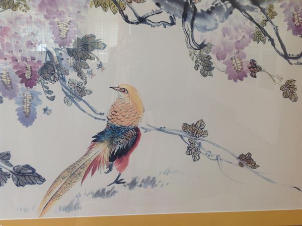 Grote foto schilderij goudfazant ingelijst . huis en inrichting schilderijen en foto