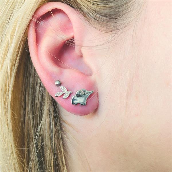 Grote foto zilveren olifant oorstekers sieraden tassen en uiterlijk oorbellen
