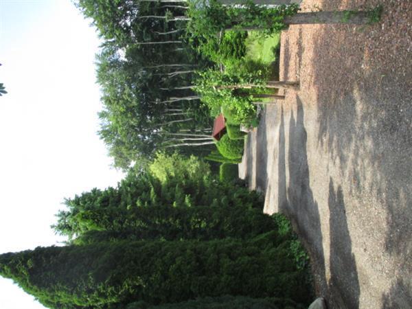 Grote foto vakantiepark trimunt groningen friesland a7 huizen en kamers recreatiewoningen