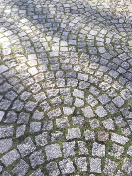 Grote foto prinsen keitjes tuin en terras sierstenen en rotsen