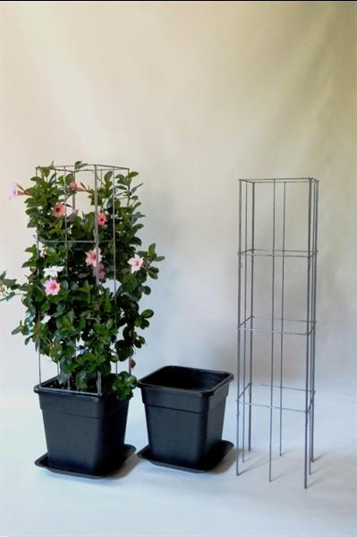 Grote foto webwinkel zelf kweken fruit groente klimplanten tuin en terras kassen en kweekspullen
