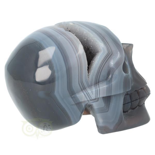 Grote foto agaat geode kristallen schedel 714 gram verzamelen overige verzamelingen