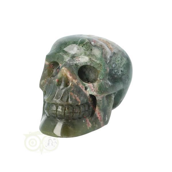 Grote foto mosagaat schedel 228 gram verzamelen overige verzamelingen