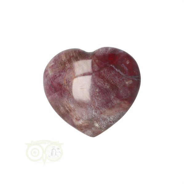 Grote foto versteend hout hart 3 cm nr 47 verzamelen overige verzamelingen