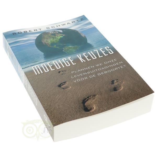 Grote foto moedige keuzes robert schwartz boeken overige boeken