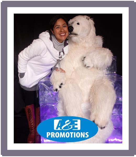 Grote foto verhuur arrenslee knokke heist ijsbeer bewegend diversen kerst