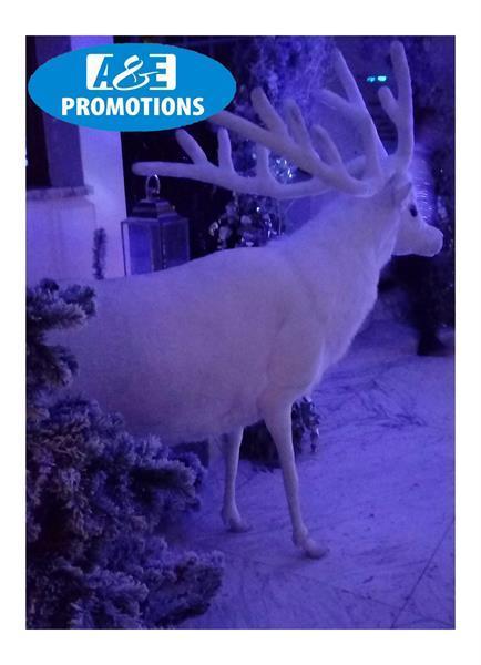 Grote foto wit hert wit rendier xl verhuur antwerpen brugge diversen kerst