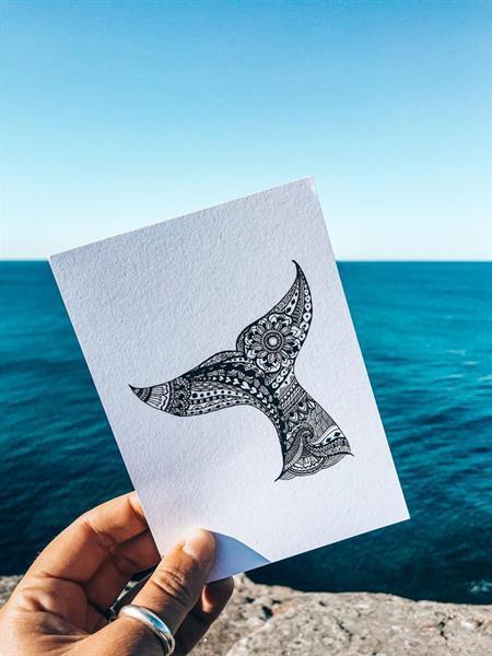 Grote foto postkaart walvissenstaart verzamelen overige verzamelingen
