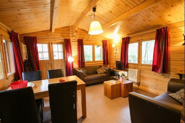 Grote foto chalet met finse sauna voor 4 personen op de veldkamp in epe vakantie nederland midden
