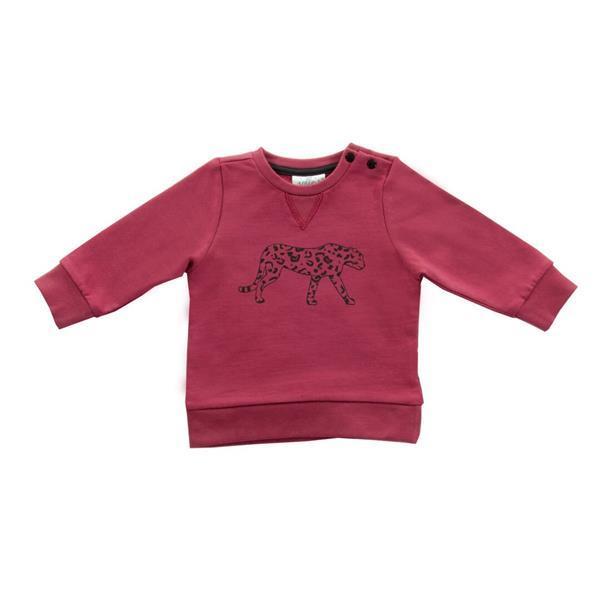 Grote foto truitje 50 56 leopard maroon red kinderen en baby overige