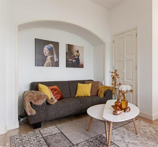 Grote foto appartement steenweg in utrecht huizen en kamers appartementen en flat