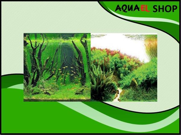Grote foto osaka achterwand poster 60cm hoog art. 31018 dieren en toebehoren vissenkommen