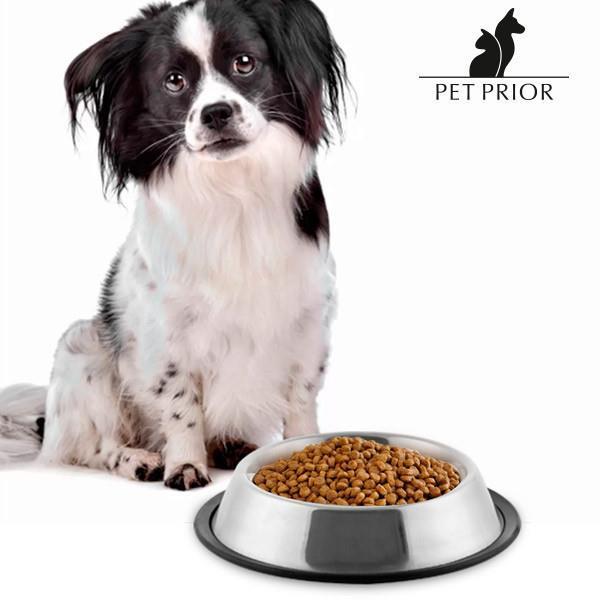 Grote foto pet prior eetbakje voor honden dieren en toebehoren overige