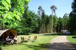 Grote foto heerlijke campings in drenthe vakantie campings