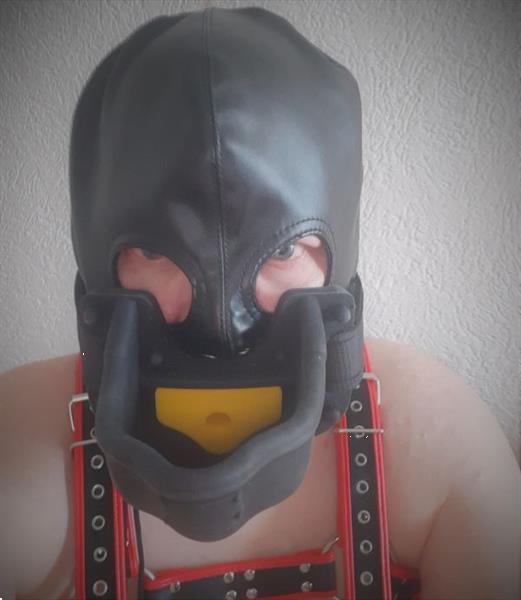 Grote foto slaaf 46 zoekt meesteres meester of stel erotiek sm contact