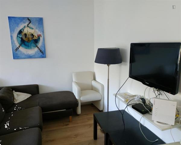 Grote foto kamer beschikbaar in maria austriastraat huizen en kamers kamers